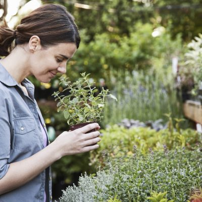 Caucasian woman holding a small plant, an aromatic herb and smelling it, shopping at a garden center